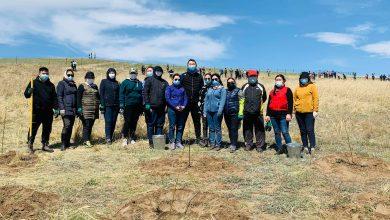 Photo of Ногоон Дархан төслийн хүрээнд Бүх нийтийн мод тарих үндэсний өдөр
